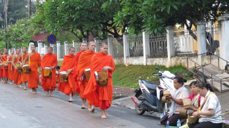 luang prabang monks at dawn